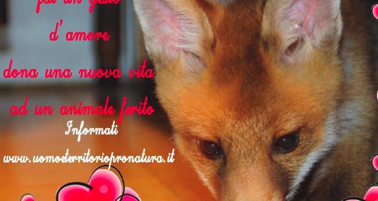 San valentino dona una nuova vita ad un animale ferito - Animale san valentino clipart ...