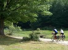 bici_parco