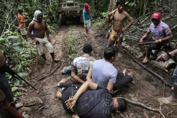 brasile amazonas