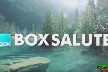box salute