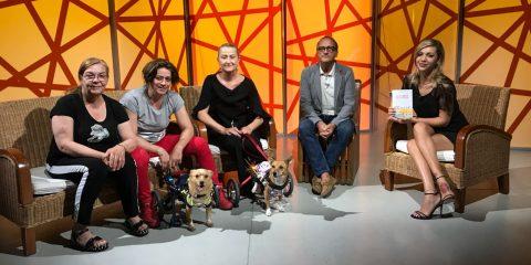 Bike for animals e cani disabili