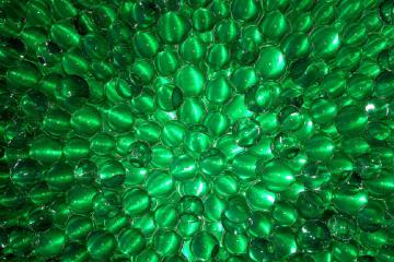 sosia plastica